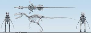 Utahraptor ostrommaysorum skeletal