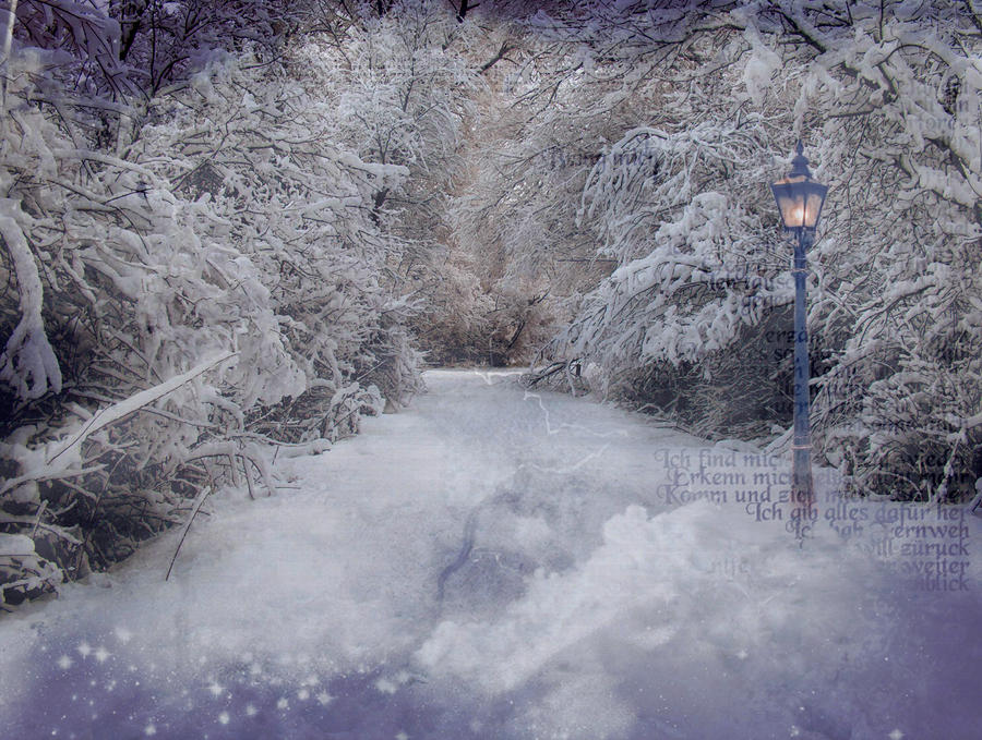 Is This The Way To Narnia By Dewdroppy On DeviantArt