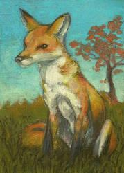 Fox Sitting In Grass by Everruler