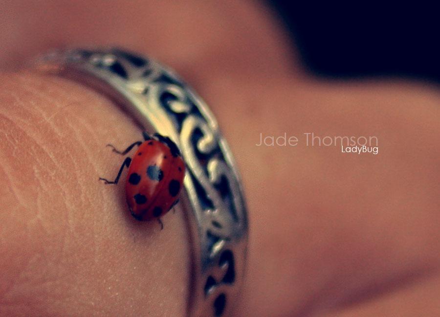 Ladybug by FairyUnique - u�ur b�cekli avatarlar
