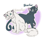 WC Bluefur and Snowfur