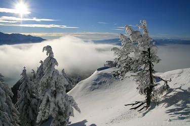 Winter Wonderland 1 by doruoprisan