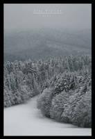 Winter Wonderland 12 by doruoprisan