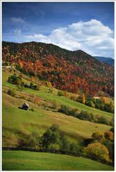 Autumn Wonderland 5 by doruoprisan