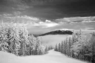 Winter Wonderland 18 by doruoprisan