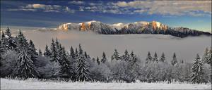 Winter Wonderland 19