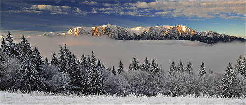 Winter Wonderland 19 by doruoprisan