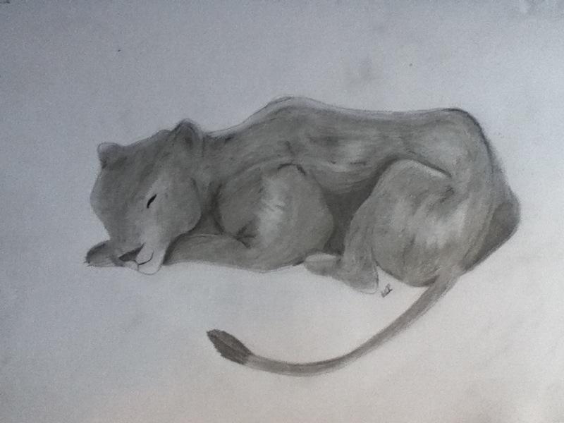 lioness by MeganUzumaki