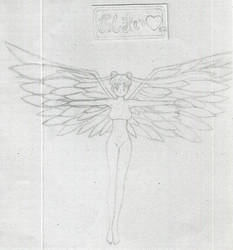 Sailor Moon Sailor Stars --Finale-- by EmissixD