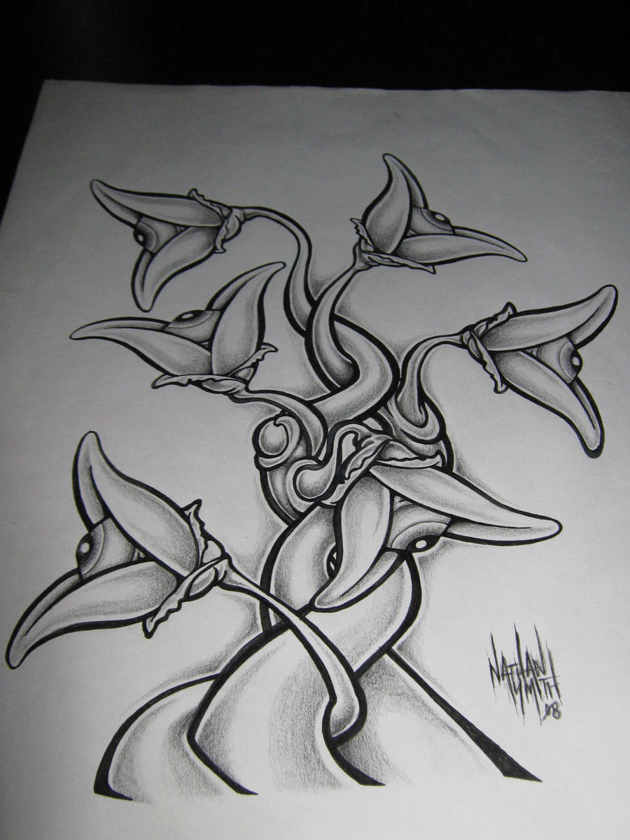 Easy Drawings Of Flowers And Vines Easy Pencil Drawings O...