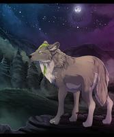 Midnight by MapleSpyder