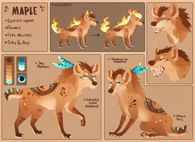Maple Reference - Summer 2016