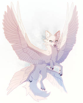 wings unwound