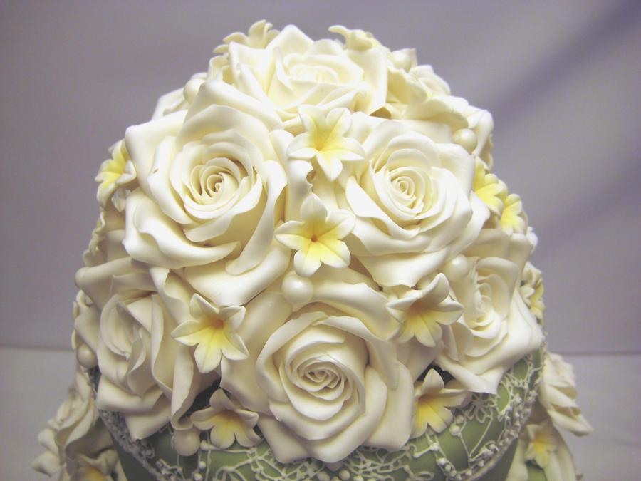 Roses Close Up by Kiilani