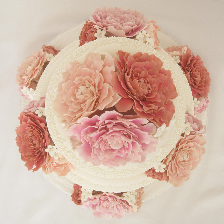 Peony Cake From Above by ~Kiilani