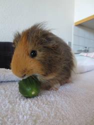 Yum cucumber by Phantira