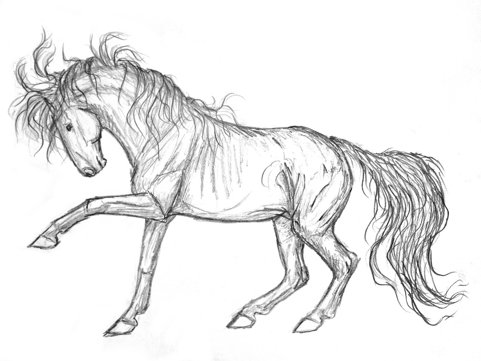 Mustang Sketch by Vizseryn on DeviantArt