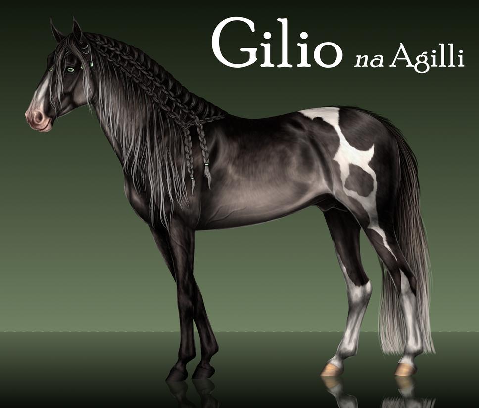 Gilio by Vizseryn