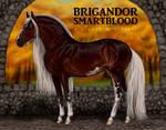 The Brigandor Smartblood!