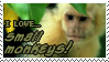 I love Small Monkeys by Mandspasm