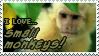 I love Small Monkeys by Mandspasm