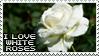 I love White Roses by Mandspasm