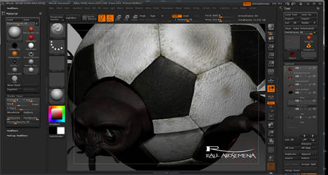 BichitoDelFutbol-InsideLook by raularosemena