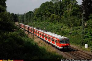 DB 420-915 by Tigrar
