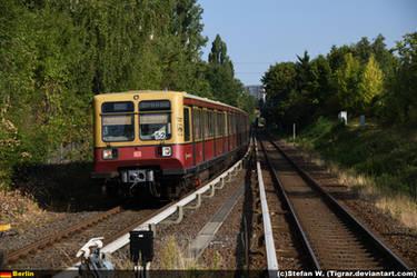 DB 485-110 by Tigrar