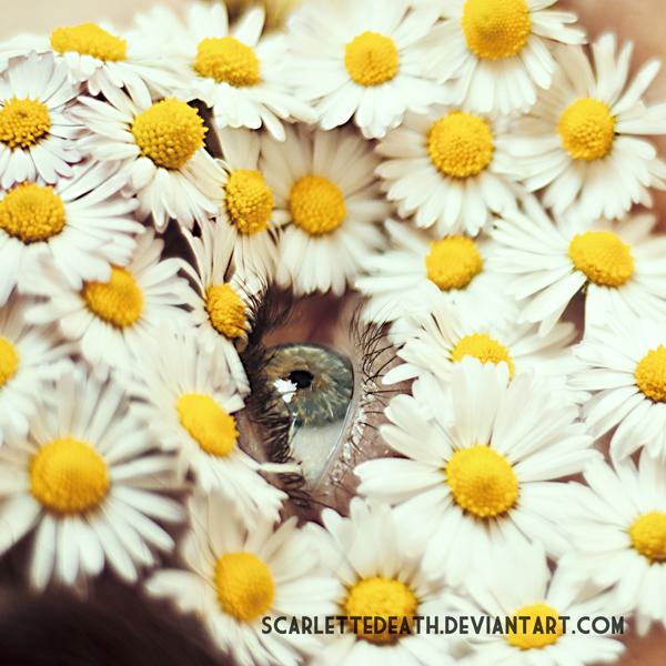 Flower girl II by ScarletteDeath
