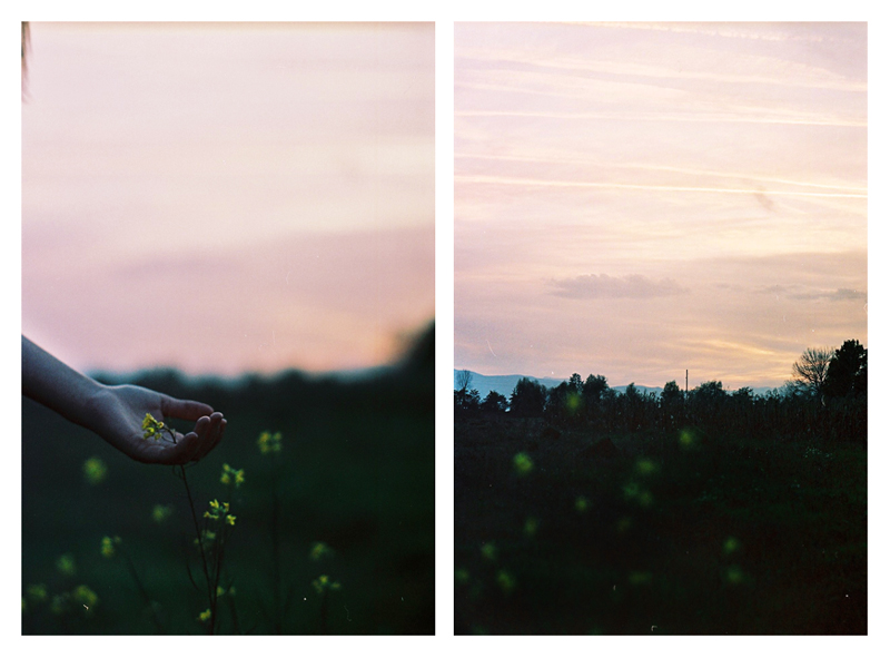 Diptych and Triptych stories by WithinEye
