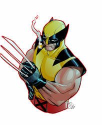 Wolverine by TheAdrianNelson