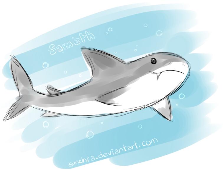 Shark by Sunehra