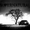 Icon: Supernatural-semistock by EmonyJade