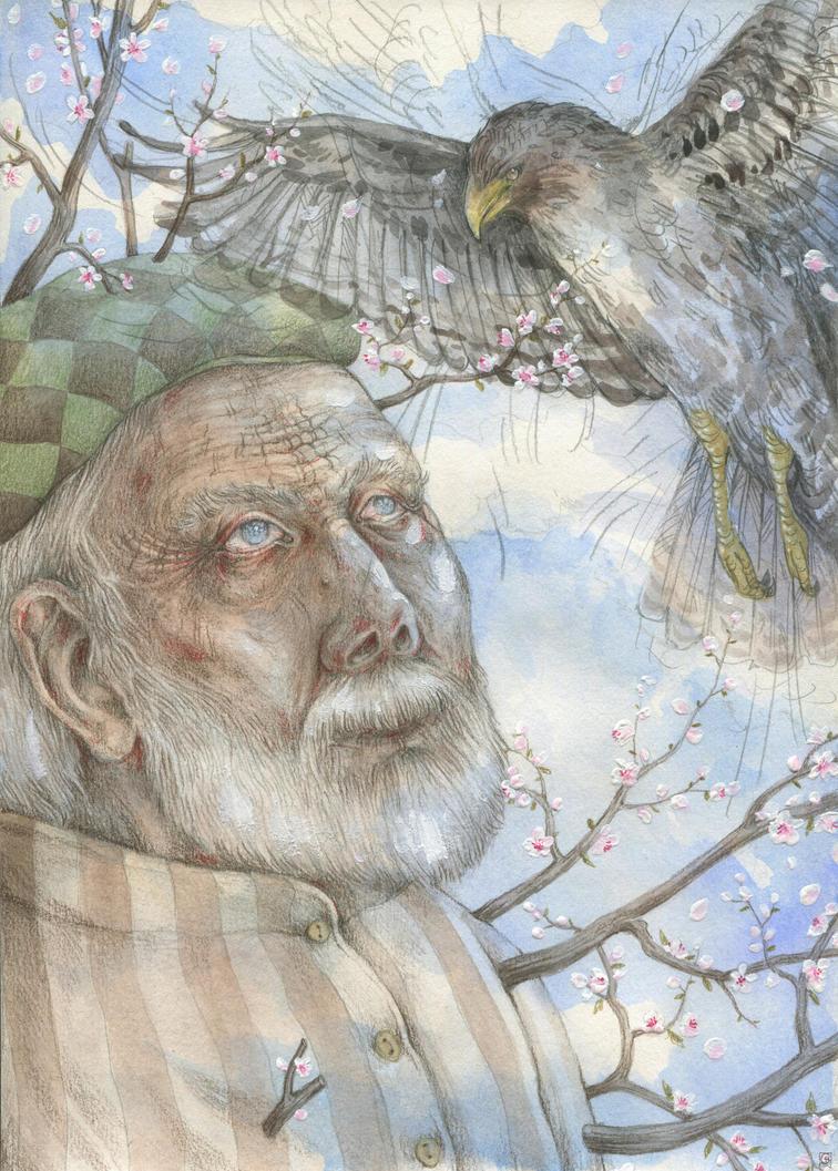 Hawks by Gawarin
