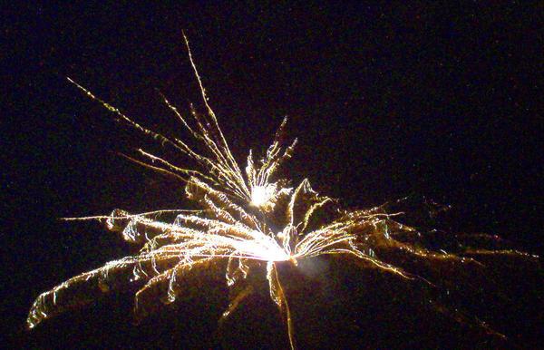2006 Firework 5 by mintdawn