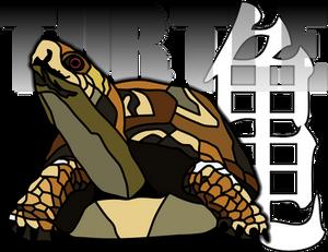 Turtle Powa