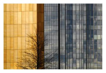 golden wall by anaumceski