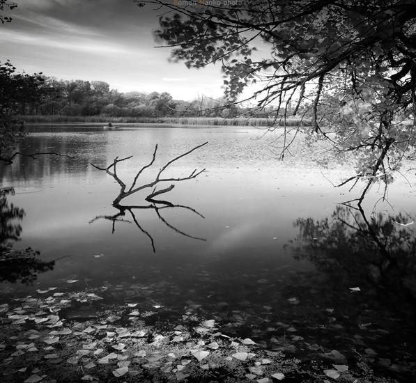 Magic lake 3 by manroms