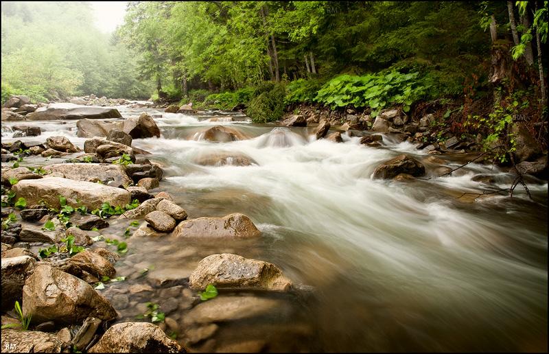 Carpathian life 4 by manroms