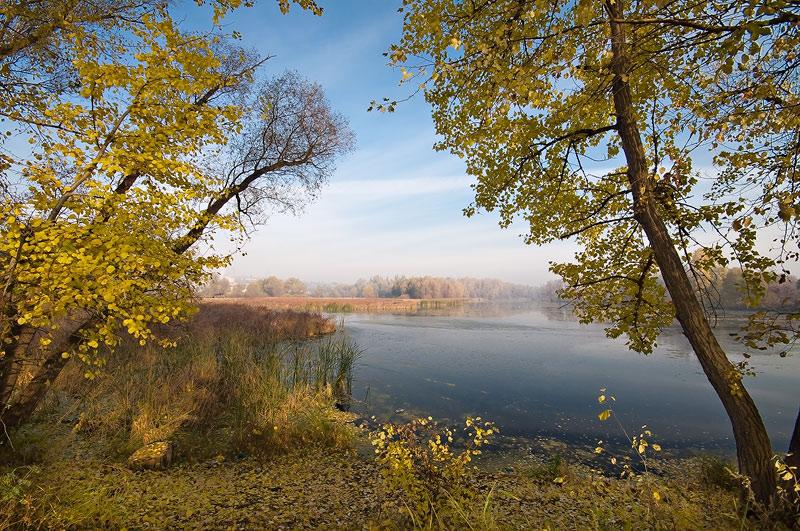 Autumn autumn by manroms