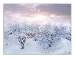 December Sunset by fudgemallow