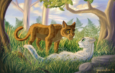 Dustpelt and Ferncloud