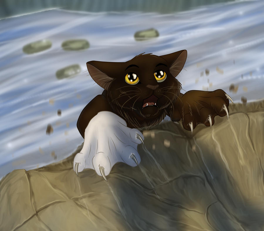How Many Warriors Books By Erin Hunter Are There: This Day Shall Bring An Unnecessary Death. By Gasuaska On