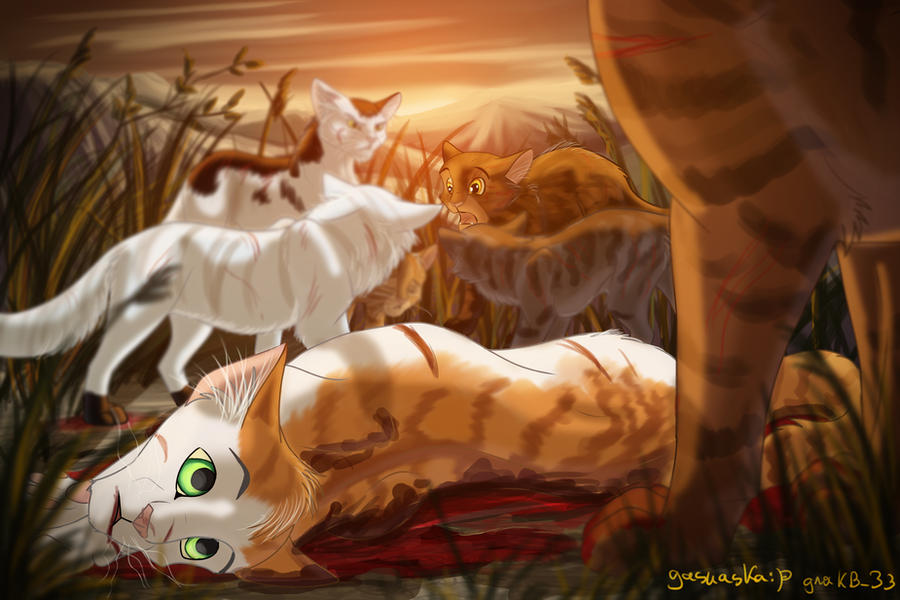 ... thanks to Tigerstar.