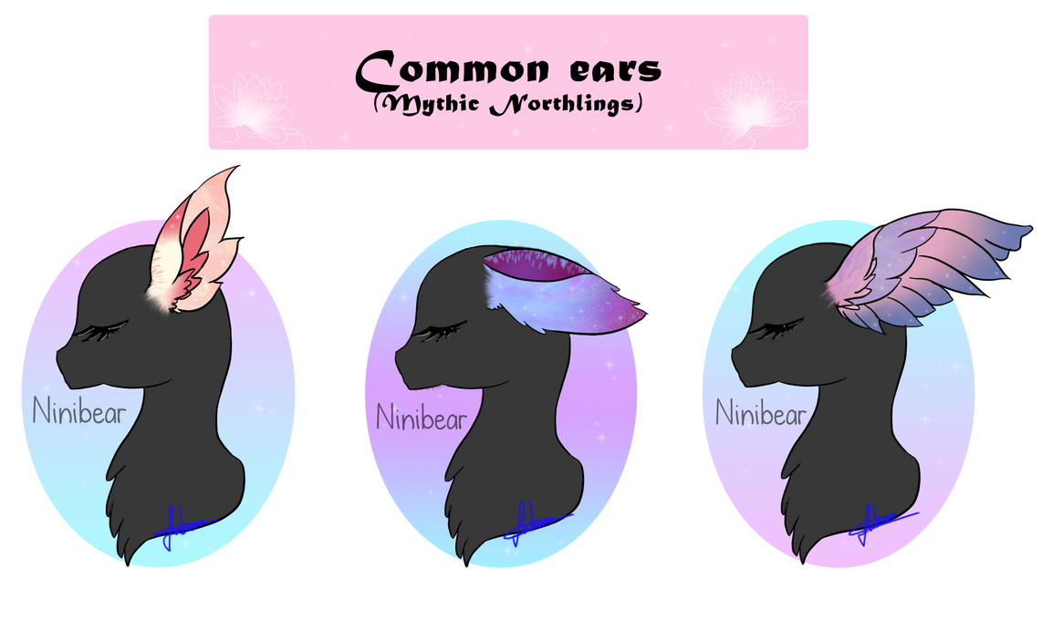 Pokemon Feral And Pony Commissins And Customs New Ponys