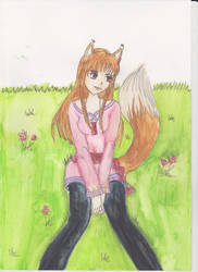 Holo, Spice and Wolf by MultiRagnell