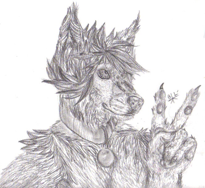 Shashe Timber Shereye by Wildloverwithwolfs