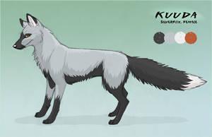 Kuuda ref sheet by Kuuda
