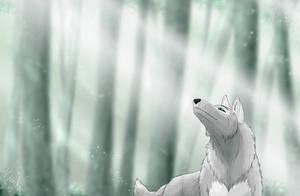 Magic by Kuuda